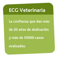 ECG Veterinaria Registro